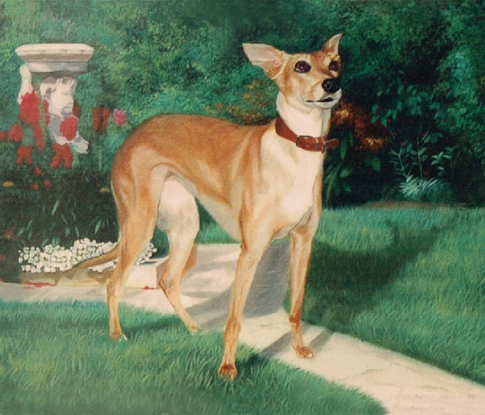 fc093ddd9b78 Pet Portrait Oil Painting of a Dog in Garden.
