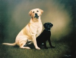 Oil Painting of Two Dogs