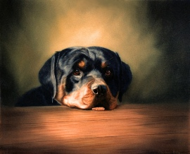 Pet Portrait Oil Painting of a Dog.